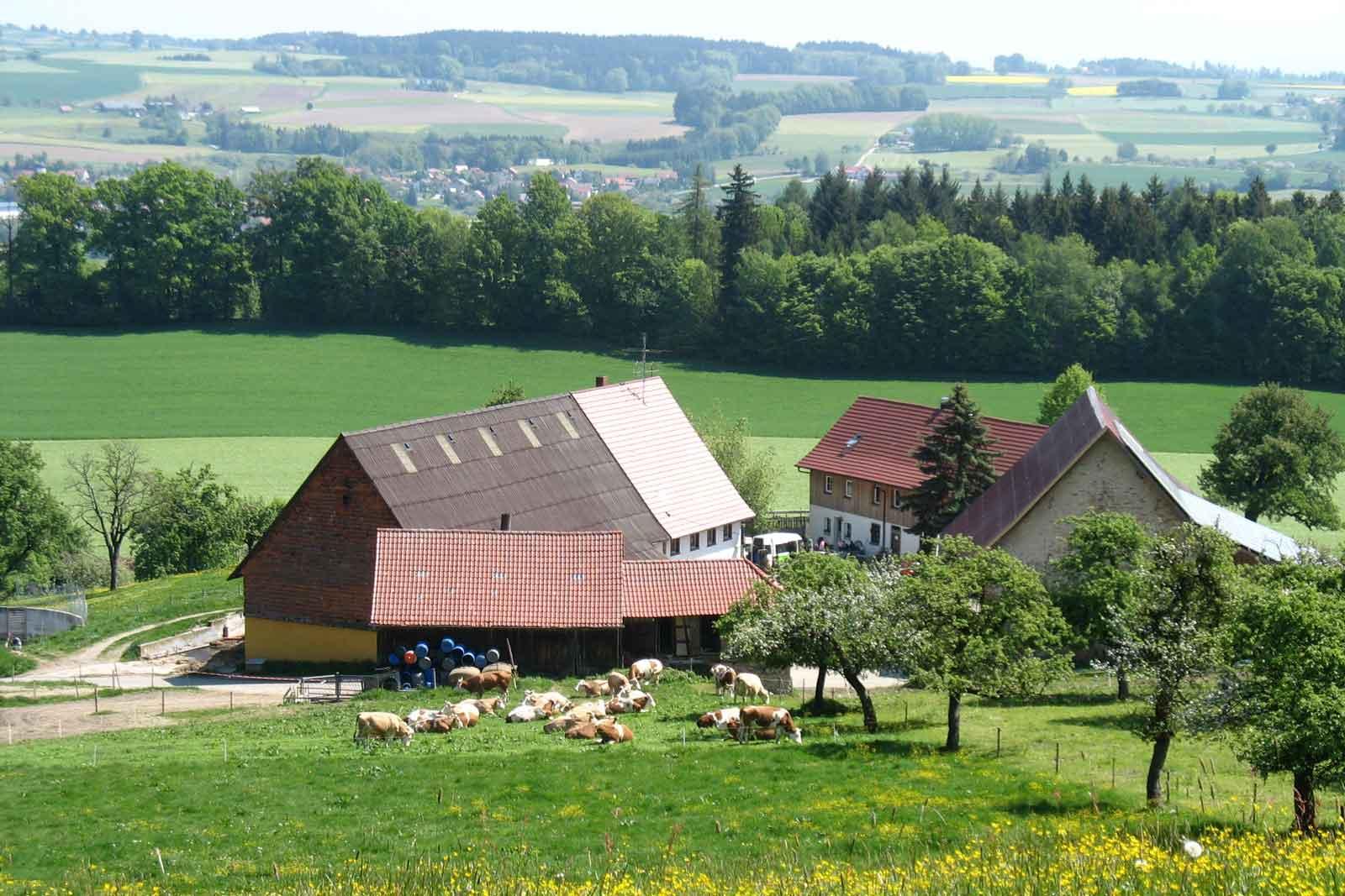 Biobauernhof Einhaldenhof